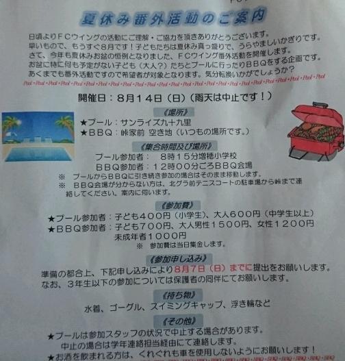 DSC_0018_crop_527x504.JPG